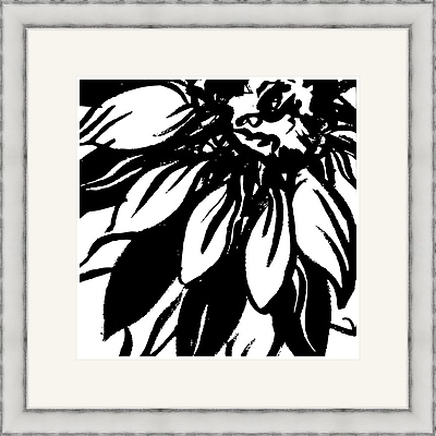 Melissa Van Hise Bloomy Burst I Framed Graphic Art; Black