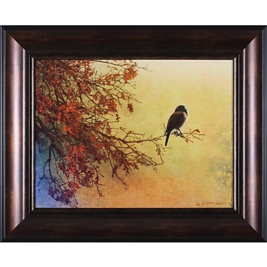 Art Effects Snow Oak Junco by Chris Vest Framed Painting Print