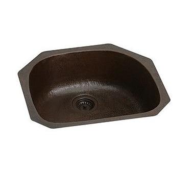 Elkay Gourmet 24'' x 22'' Undermount Kitchen Sink