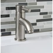 Premier Faucet Essen Single Handle Bathroom Faucet; Brushed Nickel