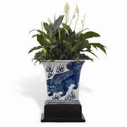 Port 68 Chow Porcelain Pot Planter