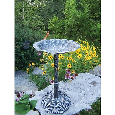 Oakland Living Lily Birdbath; Antique Pewter