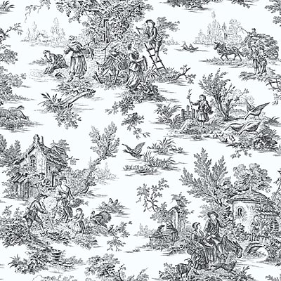 Inspired By Color™ Black & White Campagne Toile Wallpaper, Black With White