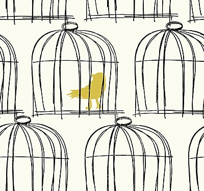 Inspired By Color™ Black & White Birdcage Wallpaper, White With Black/Red