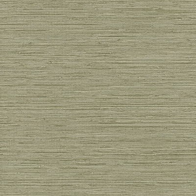 Inspired By Color™ Green Grasscloth Wallpaper, Green With Gray