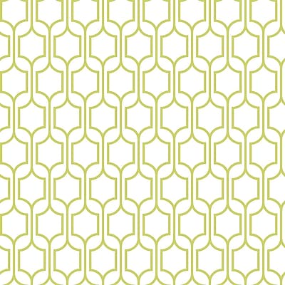 Inspired by Color™ Green Trellis Wallpaper, Green With White