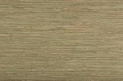Inspired By Color™ Grasscloth and Natural Grass Wallpaper, Green