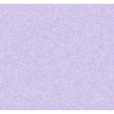 Inspired By Color™ Kids Linen Texture Wallpaper, Purple