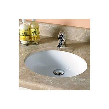 DecoLav Carlyn Classically Redefined Ceramic Oval Undermount Bathroom Sink w/ Overflow; Bone