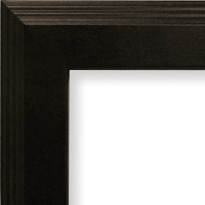 Craig Frames Inc. 1.27'' Wide Smooth Picture Frame; 12 ''x 18''