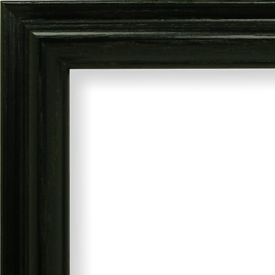 Craig Frames Inc. 1'' Wide Wood Grain Picture Frame; 14'' x 18''