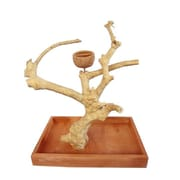 A&E Cage Co. Java Wood Table Top Play Stand; Small (15'' H)