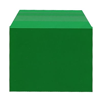 JAM Paper® Cello Sleeves, A2, 4 1/4 x 5 11/16, Forest Green, 100/pack (45SGR1)