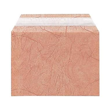 JAM Paper MD – Sachets en fibre de cellophane, 4 5/8 x 6 3/7 (po), mauve, 100/paquet