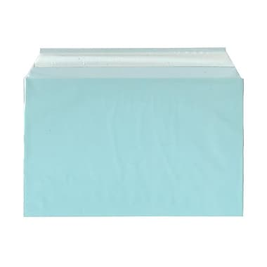 JAM Paper® Cello Sleeves, A9, 5 7/16 x 8 5/8, Aqua Blue, 100/pack (2784901)