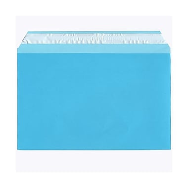 JAM Paper® Cello Sleeves, A9, 5 7/16 x 8.63, Blue, 1000/Pack (02783140B)