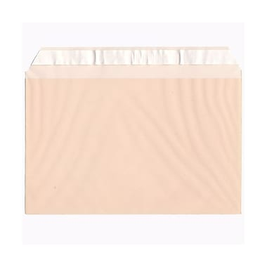 JAM Paper® Cello Sleeves, A9, 5 7/16 x 8.63, Peach, 1000/Pack (02783142B)