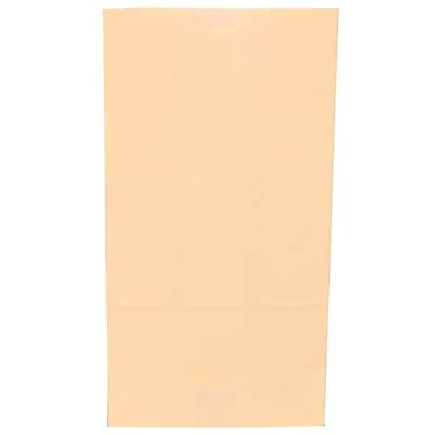 JAM Paper® Kraft Lunch Bags, Medium, 5 x 9.75 x 3, Ivory, 500/box (691KRIVB)
