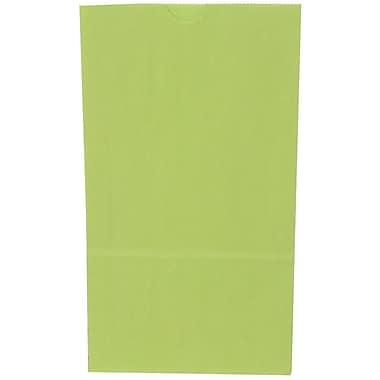 JAM PaperMD – Sacs-repas en papier Kraft, grand format, 6 x 11 x 3,75 po, vert lime, 500/paquet (692KRLIGRB)