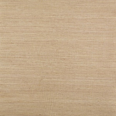 Inspired By Color™ Grasscloth Sisal Wallpaper, Tan