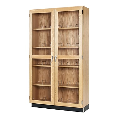 DWI Microscope Epoxy, Oak Wood Storage Case