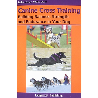Canine Cross Training: Building Balance, Strength and Endurance in Your Dog