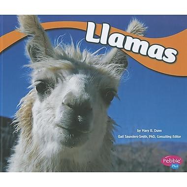 Llamas (South American Animals)