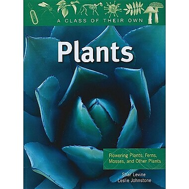 Plants: Flowering Plants, Ferns, Mosses, and Other Plants (Class of Their Own)