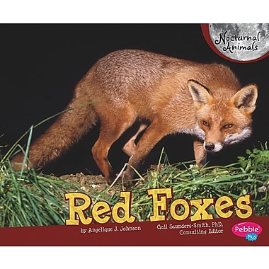 Red Foxes (Nocturnal Animals)