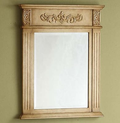 Empire Industries Sienna Vanity Mirror; Antique White