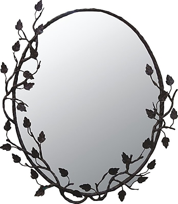 Quiescence Aspen Mirror; Black