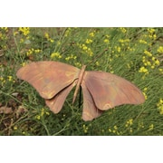Ancient Graffiti Butterfly Flamed Garden Stake