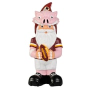 Team Beans NFL Thematic Gnome Statue; Washington Redskins