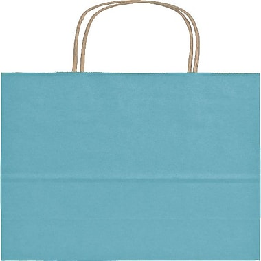 Bags & BowsMD – Sacs de magasinage Colour-On-Kraft, 5 1/4 x 3 1/2 x 8 1/4 po, bleu-vert, 250/paquet