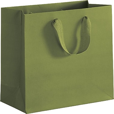 Bags & Bows® Manhattan Eco Euro-Shoppers, 8