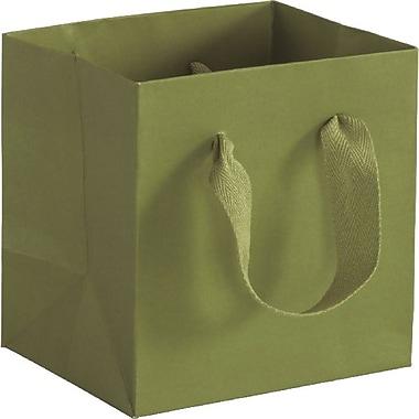 Bags & BowsMD – Sac Manhattan Eco Euro 5 po x 4 po x 6 po, vert Greenwich, 100/paquet