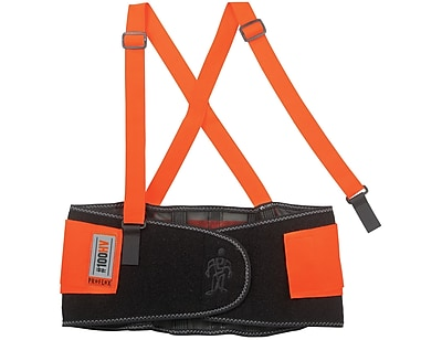 Ergodyne® ProFlex® 100 Economy Hi-Visibility Back Support, Orange, Small