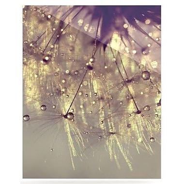 KESS InHouse Sparkles of Gold by Ingrid Beddoes Photographic Print Plaque