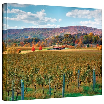"ArtWall ""Vineyard in Autumn"" Gallery Wrapped Canvas Art By Steve Ainsworth, 12"" x 18"""