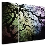 """ArtWall """"Under The Rainbow: Japanese.."""" 3 Piece Gallery Wrapped Canvas Art By John Black, 36"""" x 54"""""""