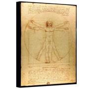 "ArtWall ""Vitruvian Man"" Gallery Wrapped Canvas Arts By Leonardo Da Vinci"