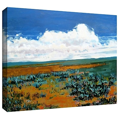 "ArtWall ""Rolling Clouds"" Gallery Wrapped Canvas Art By Gene Foust, 24"" x 32"""