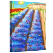"ArtWall ""Provence Rows"" Gallery Wrapped Canvas Art By Susi Franco, 48"" x 36"""