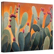 "ArtWall ""Cactus Orange"" Gallery Wrapped Canvas Art By Rick Kersten, 18"" x 24"""