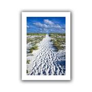 "ArtWall ""Beach Path"" Unwrapped Canvas Art By David Liam Kyle, 48"" x 32"""