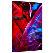 """ArtWall """"Into Abstract"""" Gallery Wrapped Canvas Arts By Byron May"""