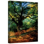 """ArtWall """"Bodmer Oak at Fountainbleau Forest"""" Gallery Wrapped Canvas Art By Claude Monet, 36"""" x 48"""""""