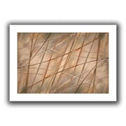 "ArtWall ""Deschampsia"" Unwrapped Canvas Arts By Cora Niele"
