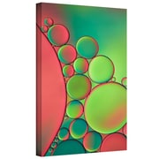 """ArtWall """"Green"""" Gallery Wrapped Canvas Art By Cora Niele, 12"""" x 18"""""""