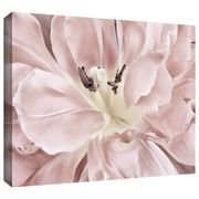 "ArtWall ""Pastel"" Gallery Wrapped Canvas Arts By Cora Niele"